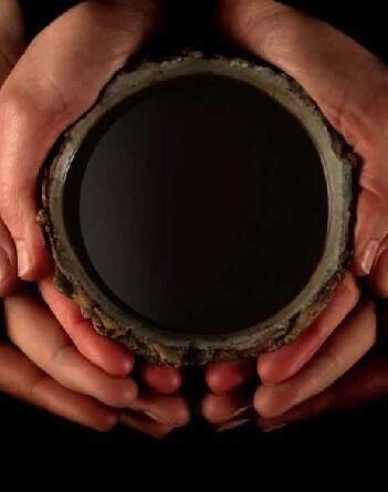hands ayahuasca iowaska ICEERS