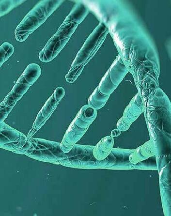 DNA ICEERS