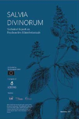 Salvia divinorum Technical Report ICEERS PsychePlants