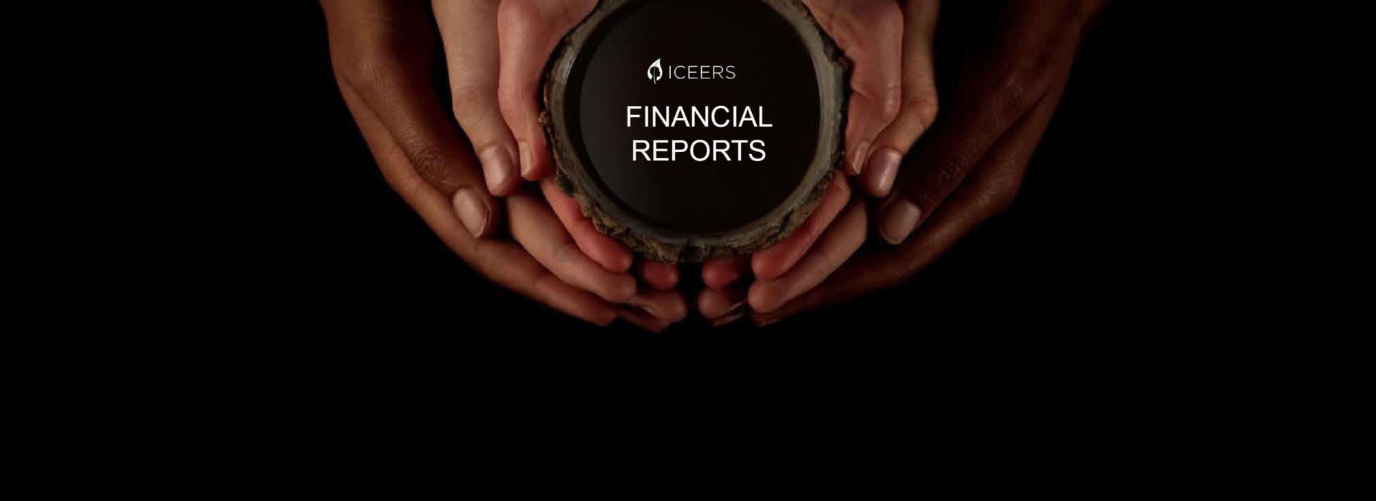 ICEERS Financial Reports