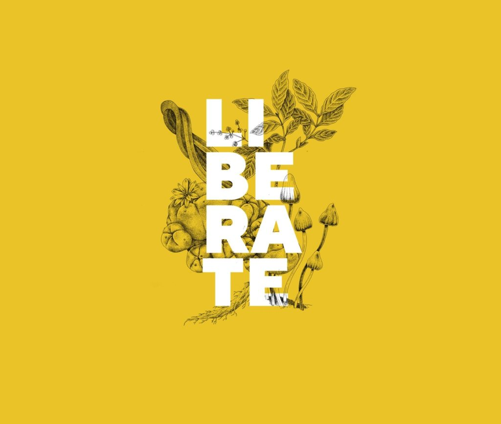Liberate Plant Teachers ICEERS ADF yellow