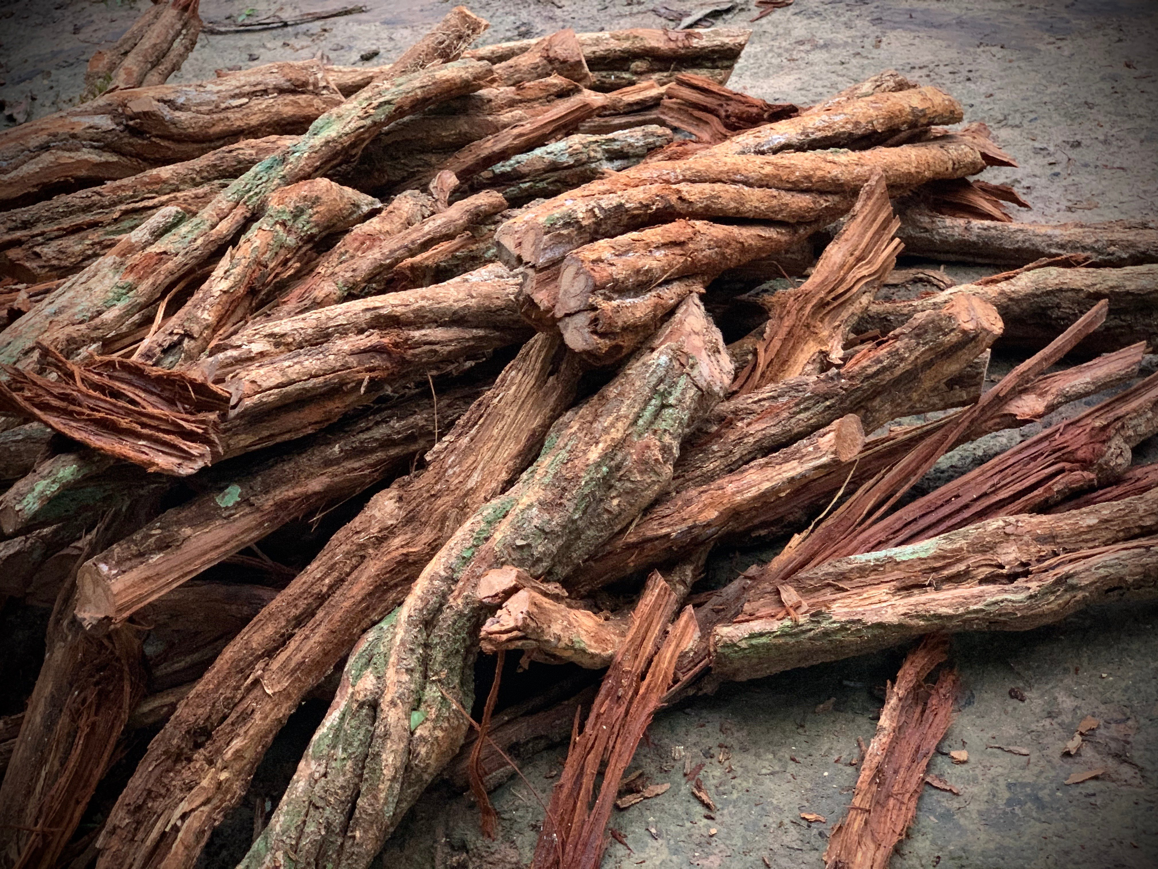 Mental Health And Quality Of Life After A First Ayahuasca Experience