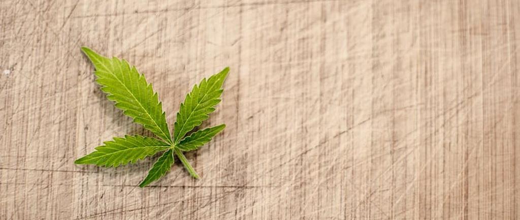 mapa leyes cannabis marihuana marijuana Cannabmed ICEERS