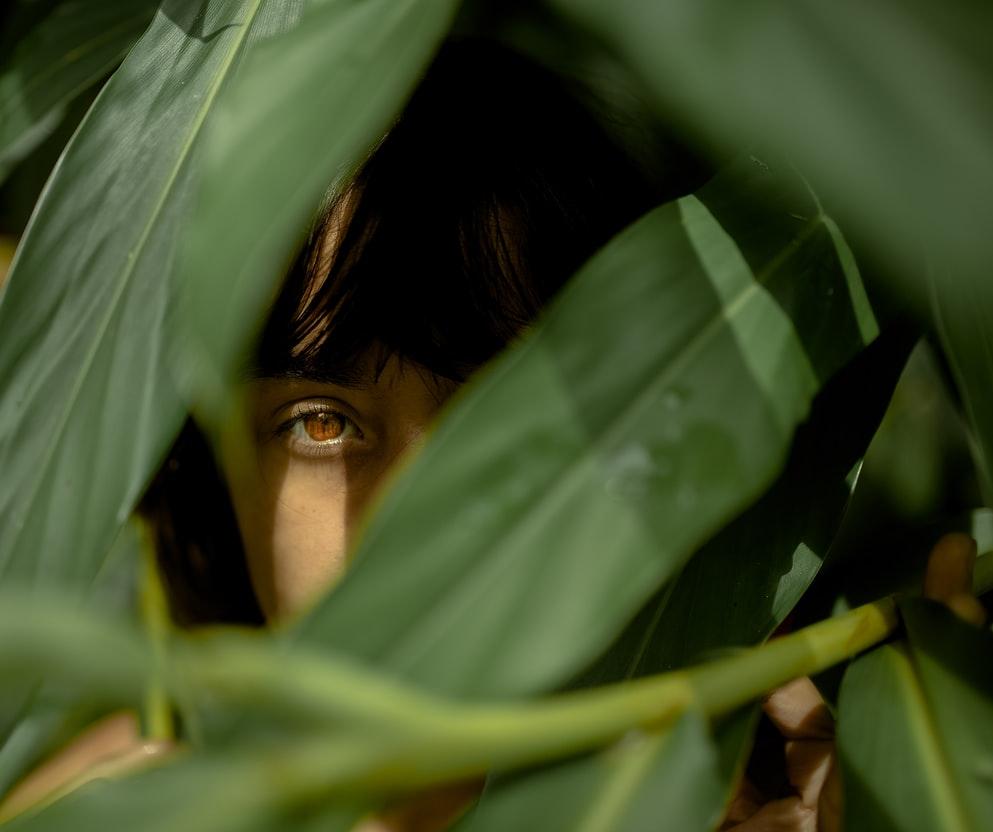 ayahuasca recognition facial emotions study ICEERS iowaska