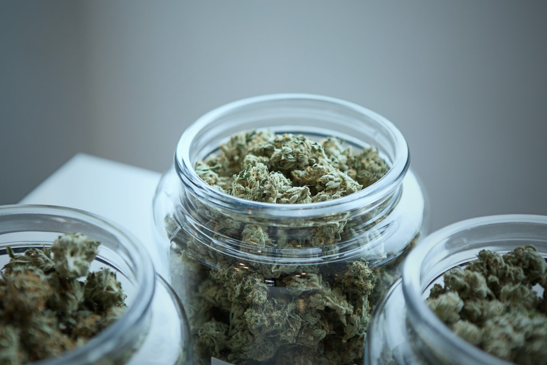 CSC cannabis social club clubs clubes marihuana marijuana ICEERS study Europe Europa