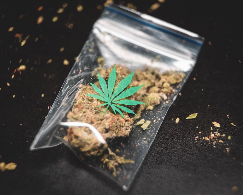 cannabis social club federations CSC federación CSCs marihuana marijuana