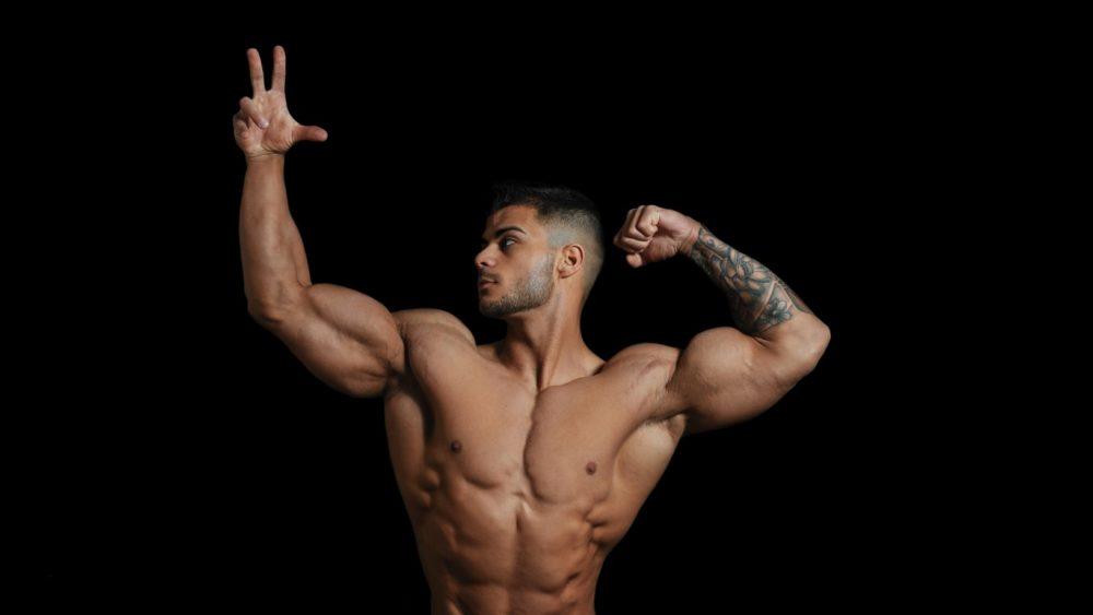esteroides anabólico androgénicos reducción riesgos anabolic androgenic steroids risk reduction