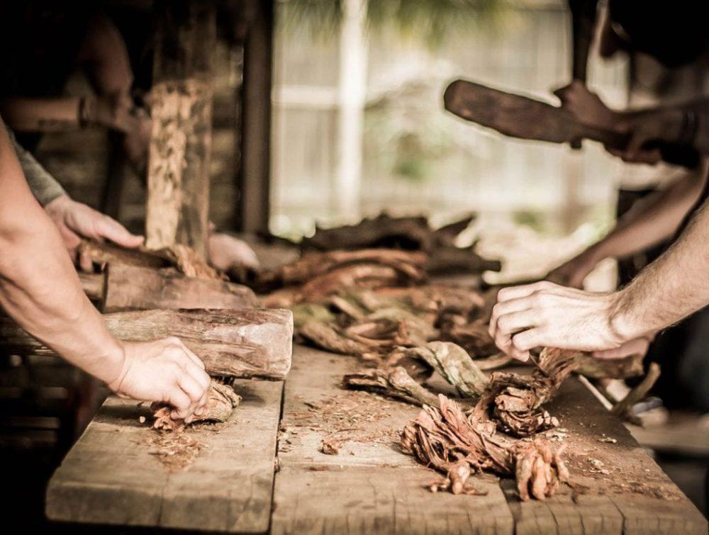 preparación peligros turismo ayahuasca shipibo